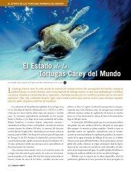 El Estado de la Tortugas Carey del Mundo
