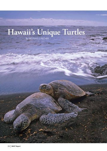 Hawaii's Unique Turtles - The State of the World's Sea Turtles