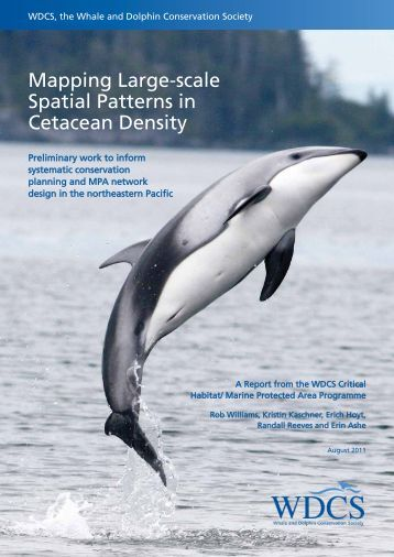 Mapping Large-scale Spatial Patterns in Cetacean Density
