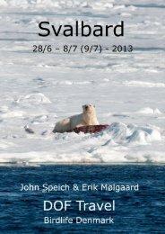 Svalbard rapport 2013.pdf - DOF Travel