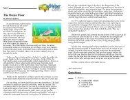 ocean floor reading