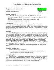 Classification Introduction worksheet