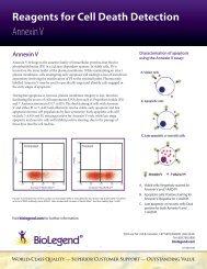 Reagents for Cell Death Detection Annexin V - BioLegend