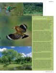 Nationaal Park - Page 6