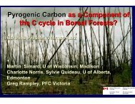 Pyrogenic Carbon as a Component of the C cycle in Boreal Forests?