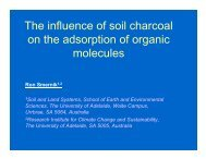 The influence of soil charcoal on the adsorption of organic molecules