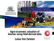 Agro-economic valuation of biochar using field-derived data