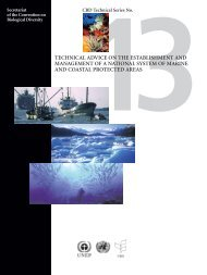 Technical Advice on the Establishment ... - MarineNZ.org.nz