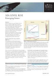 Sea Level Rise - MarineNZ.org.nz