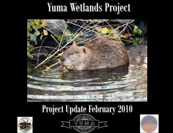 Yuma Wetlands Project Update