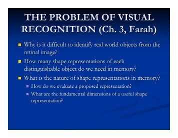 THE PROBLEM OF VISUAL RECOGNITION (Ch. 3 ... - Play Psych Mun