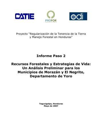 Regularización de la Tenencia de la Tierra y Manejo ... - PROFOR