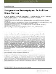 Management and Recovery Options for Ural River Beluga Sturgeon