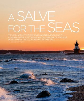Download a pdf of the article. - Institute for Ocean Conservation ...