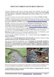 Artigo 346 - Impactos Ambientais em Áreas Urbanas - Outorga.com.br