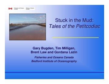 Stuck in the Mud: Tales of the Petitcodiac - COINAtlantic