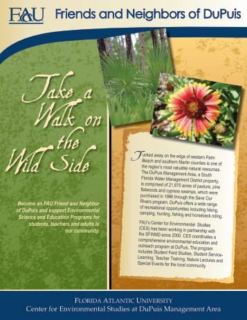 Take a Walk on the Wild Side - Florida Center for Environmental ...