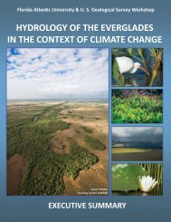 Executive Summary - Florida Center for Environmental Studies - Fau ...
