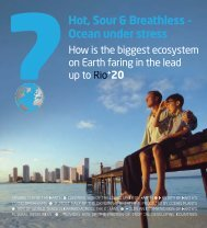 Hot, Sour & Breathless – Ocean under stress - Oceana