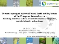 Towards synergies between Future Earth and key actors of the ...