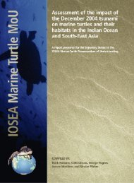 Impact of the December 2004 tsunami on marine turtle nesting ...
