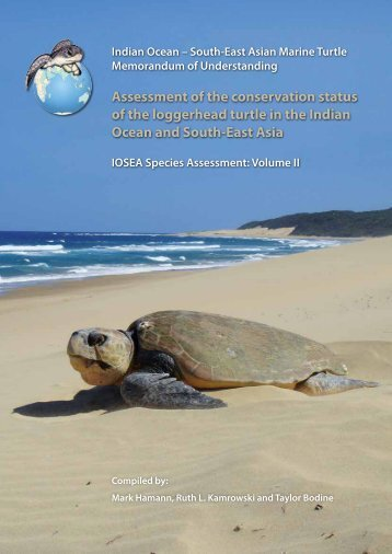 Assessment of the conservation status of the loggerhead turtle in the ...
