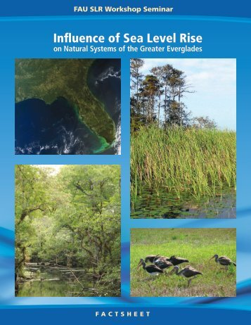 Influence of Sea Level Rise - Florida Center for Environmental Studies