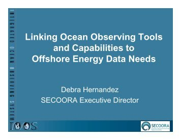Debra Hernandez, Strategic Ocean Observations