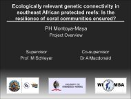 Small-scale versus large scale genetic connectivity within the coral ...