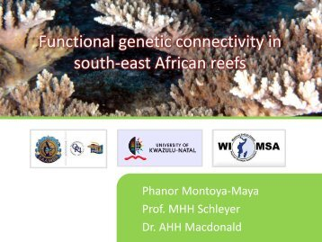 Functional connectivity.pdf - Western Indian Ocean Marine Science ...
