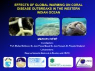 effects of global warming on coral disease outbreaks in the western ...