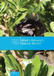 What's Bonaire's Nature Worth? - Rijksoverheid.nl