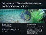 Suzana Gueiros, COPPE, Federal University of Rio de Janeiro