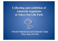 Collecting and exhibition of Antarctic organisms at Tokyo Sea Life Park