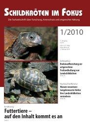Mehr ... (PDF) - Schildkröten im Fokus