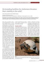 Fokus 2009_4 Englisch.qxd - Schildkröten im Fokus