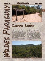 Cerro León - Schildkröten im Fokus