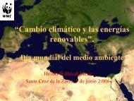 Situación ambiental a partir del Protocolo de Kioto ... - WWF