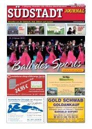 Südstadt Journal 02/2011 - LeineVision.