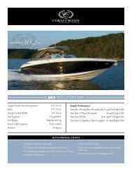 302 SPECIFICATIONS COBALT OUTSTANDING POINTS
