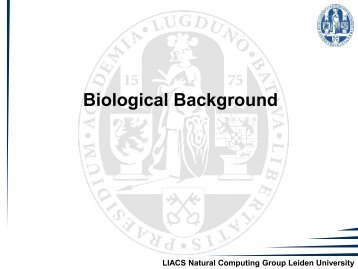 Biological Background - Natural Computing Group, LIACS, Leiden ...