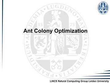 7. Ant Colony Optimization - Natural Computing Group, LIACS ...