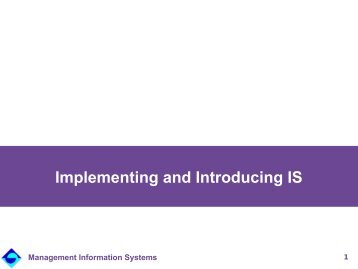 Implementing and Introducing Information Systems - Institute for ...