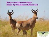 Tours by Wildebeest Safaris Ltd