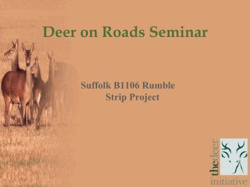 Deer on Roads Seminar - deer collisions project