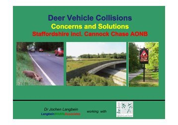Deer Vehicle Collisions - deer collisions project