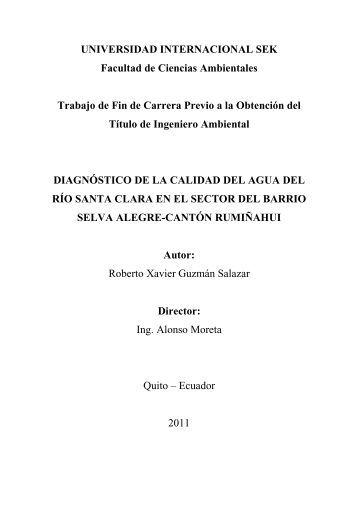 Trabajo Fin de Carrera Roberto Guzman 2011.pdf