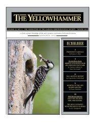 YH Winter 2012 Internet.indd - Alabama Ornithological Society