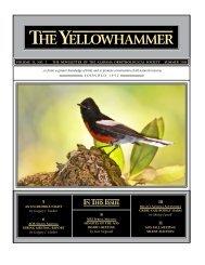 Yellowhammer Summer 2011 internet.indd - Alabama Ornithological ...
