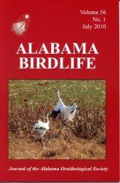 Vol. 56#1.indd - Alabama Ornithological Society